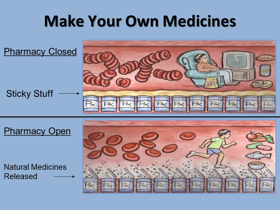 Make Your Own Medicines (pdf)